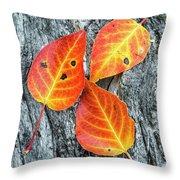 Autumn Leaves On Tree Bark Throw Pillow