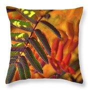 Autumn Leaves - Patagonia Throw Pillow