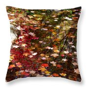 Autumn Leaves Reflections Throw Pillow