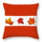 Autumn Leaves Triptych Throw Pillow