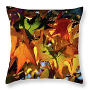 Autumn Leaves2 Throw Pillow