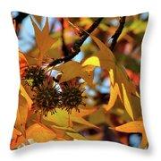 Autumn Leaves4 Throw Pillow