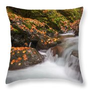 Autumn Litter Throw Pillow