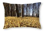 Autumn Maple Forest - Massachusetts Usa Throw Pillow