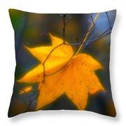 Autumn Maple Leaf Throw Pillow