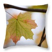 Autumn Maple Leaves Horizontal Throw Pillow