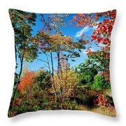 Autumn Maples Throw Pillow