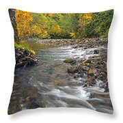 Autumn Meander Throw Pillow by Mike  Dawson