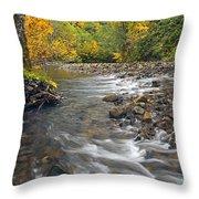 Autumn Meander Throw Pillow