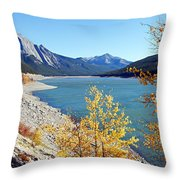 Autumn Medicine Throw Pillow