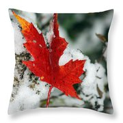 Autumn Meets Winter Throw Pillow
