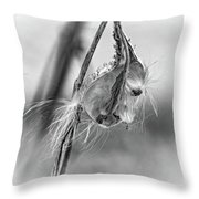Autumn Milkweed 9 - Bw Throw Pillow