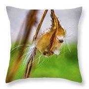 Autumn Milkweed 9 Throw Pillow