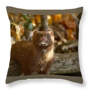 Autumn Mink Throw Pillow