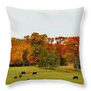 Autumn Minnesota Black Angus Cattle Throw Pillow
