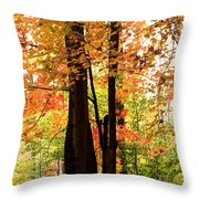 Autumn Mix Throw Pillow