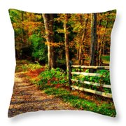 Autumn Moment - Allaire State Park Throw Pillow