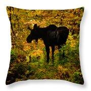 Autumn Moose Throw Pillow