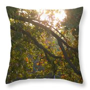 Autumn Morning Glow Throw Pillow