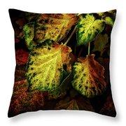 Autumn Motif Throw Pillow