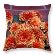 Autumn Mums - Against Brick Throw Pillow