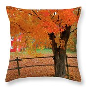Autumn Near New Germany, Nova Scotia Throw Pillow