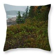 Autumn Nor' Easter Throw Pillow