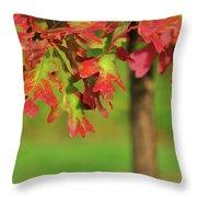Autumn Oak Tree Throw Pillow