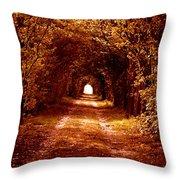 Autumn Of Life Throw Pillow