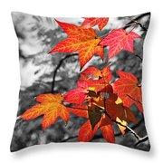 Autumn On Black And White Throw Pillow