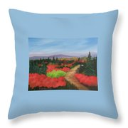 Autumn On Dolly Sods Throw Pillow