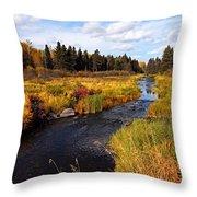 Autumn On Jackfish Creek Throw Pillow