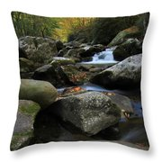 Autumn On Little River In The Smoky Mountains Throw Pillow