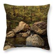 Autumn On The Creek  Throw Pillow