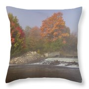 Autumn On The Moose II Throw Pillow
