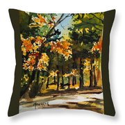 Autumn On The Natchez Trace Throw Pillow