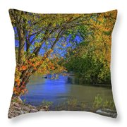 Autumn On The North Raccoon Throw Pillow