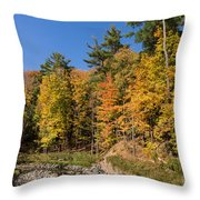 Autumn On The Riverbank - The Changing Forest Throw Pillow
