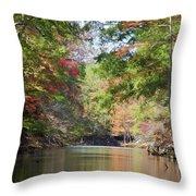 Autumn Over Golden Waters Throw Pillow