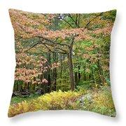 Autumn Paints A Dogwood And Ferns Throw Pillow