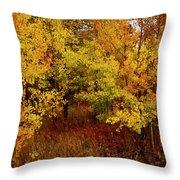 Autumn Palette Throw Pillow by Carol Cavalaris