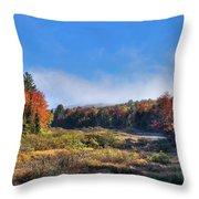 Autumn Panorama At The Green Bridge Throw Pillow