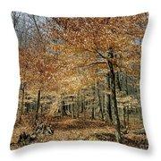 Autumn Paradise Throw Pillow
