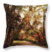 Autumn Passage II Throw Pillow
