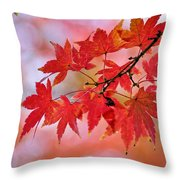 Autumn Pastel Throw Pillow