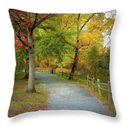 Autumn Path II Throw Pillow