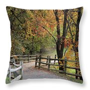 Autumn Path In Park In Maryland Throw Pillow