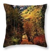 Autumn Path To Stewart Falls Throw Pillow