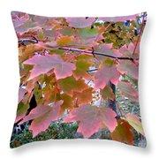 Autumn Pink 2 Throw Pillow