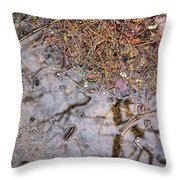 Autumn Rain On Concrete Throw Pillow